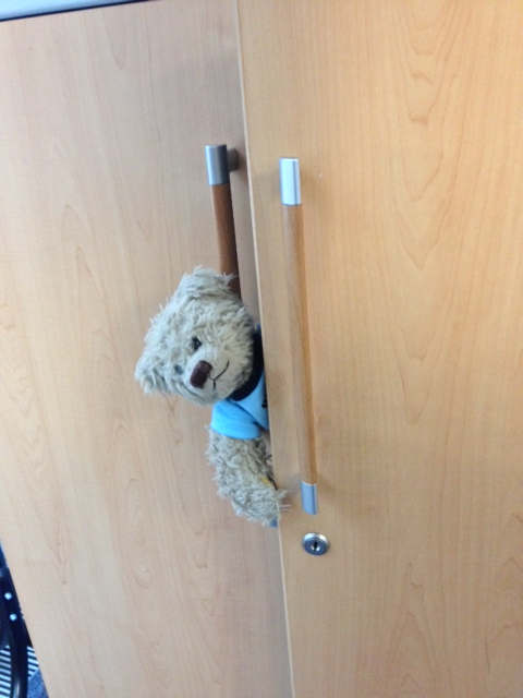 Ted's Escape!